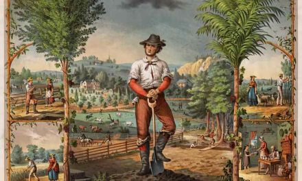 The Secret Farm Philosophy