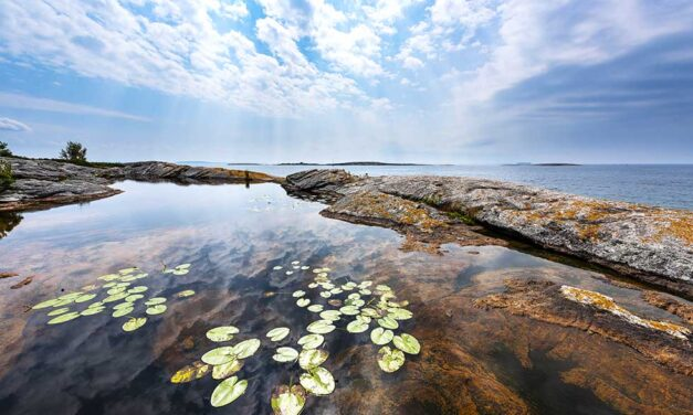 Georgian Bay Land Trust – 30 Years Protecting Nature